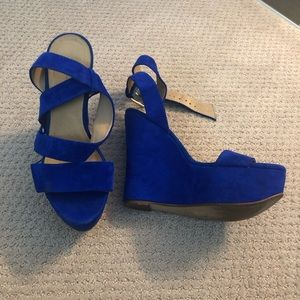 Royal Blue Aldo High Heels